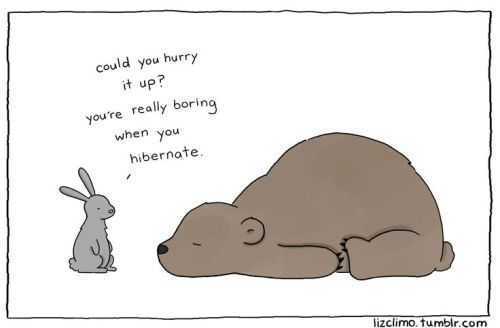Photo Credits: Liz Climo